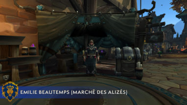 screenshot_bfa_metiers_enchantement_emilie_alliance