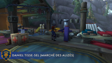 screenshot_bfa_metier_couture_emplacement_alliance