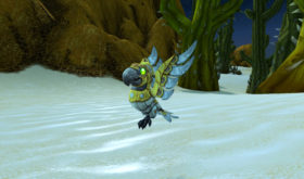 screenshot_bfa_mascotte_plumes_patch815